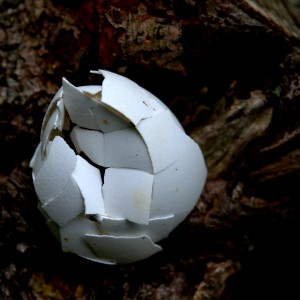 11. Varde: Æggeskulptur
